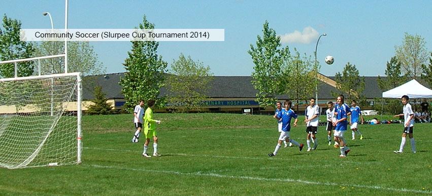 Slurpee Cup Tournament 2014